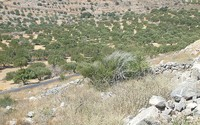 Impact of climate change on water resources Crete (Greece)