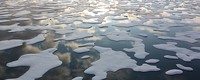 When will the summer Arctic be nearly sea ice free?