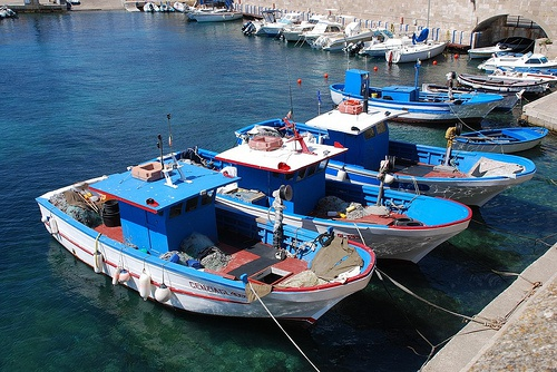 Climate effect on Mediterranean fisheries