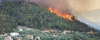 Severe wildfires in southern Greece due to increasing extremes of heat and drought