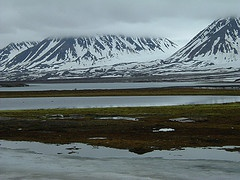 Climate change and the permafrost carbon feedback