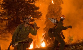 Forest fires and adaptation options in Europe