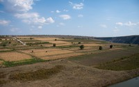 Droughts increasingly affect main crop yields in the Republic of Moldova