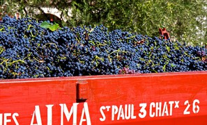 French and Swiss wine grape harvest dates 10 days earlier today than in previous 400 years