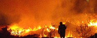 Forest fires in Spain may exceed firefighting capacity