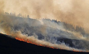Wildfires increase in Europe from north to south by a factor 10!