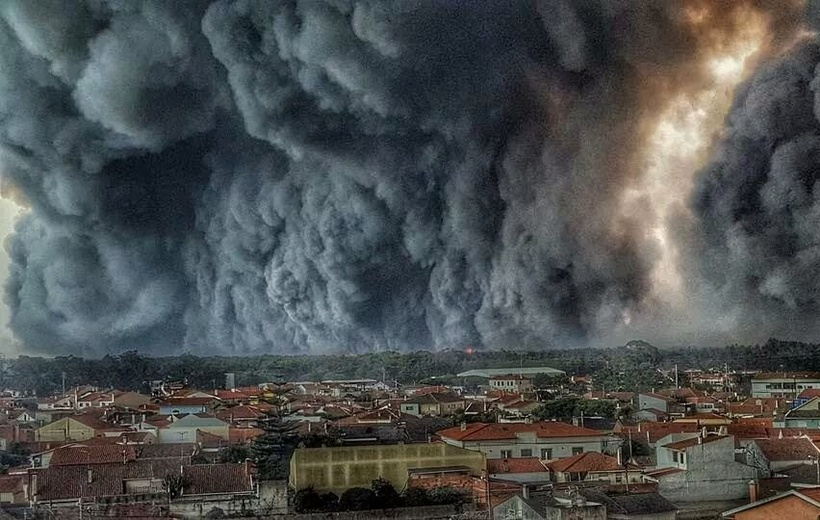 Wildfires in Portugal: is past trend of forest cover increase now 'going up in smoke'?