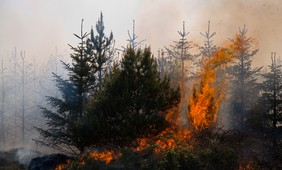 A new generation of wildfires characterized by extreme behavior