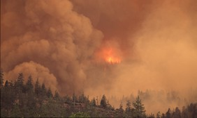 When will wildfires show the fingerprint of global warming?
