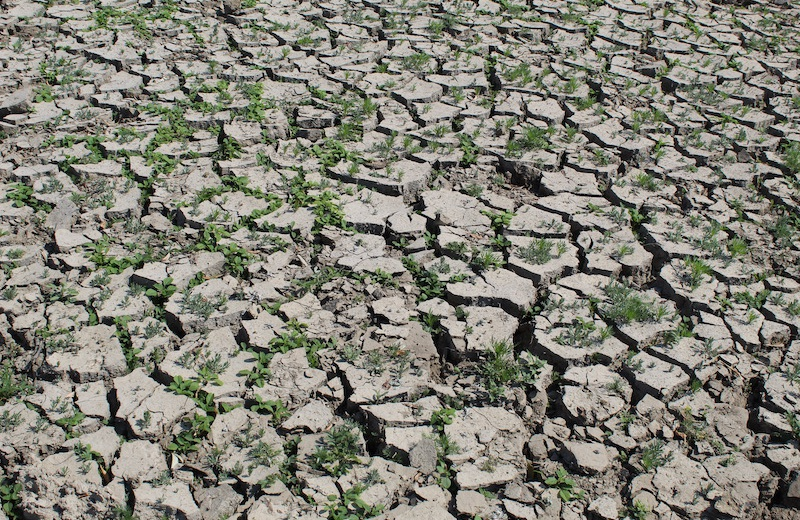 Droughts in the soil increase much less than droughts at the earth surface