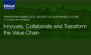 Businesses on their journey to sustainability: Notes from Transform 2019