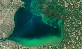 Phytoplankton blooms on lakes are increasing since the 1980s
