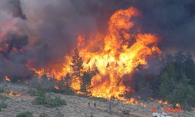 Experts call for different approach to wildfire management in Mediterranean-type regions