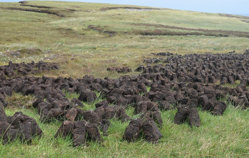 For peat's sake! Scotland restores its peatlands to keep carbon locked up