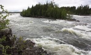 No climate change impact on river discharge in Sweden